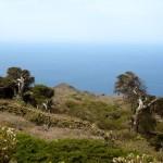La isla de El Hierro, riqueza